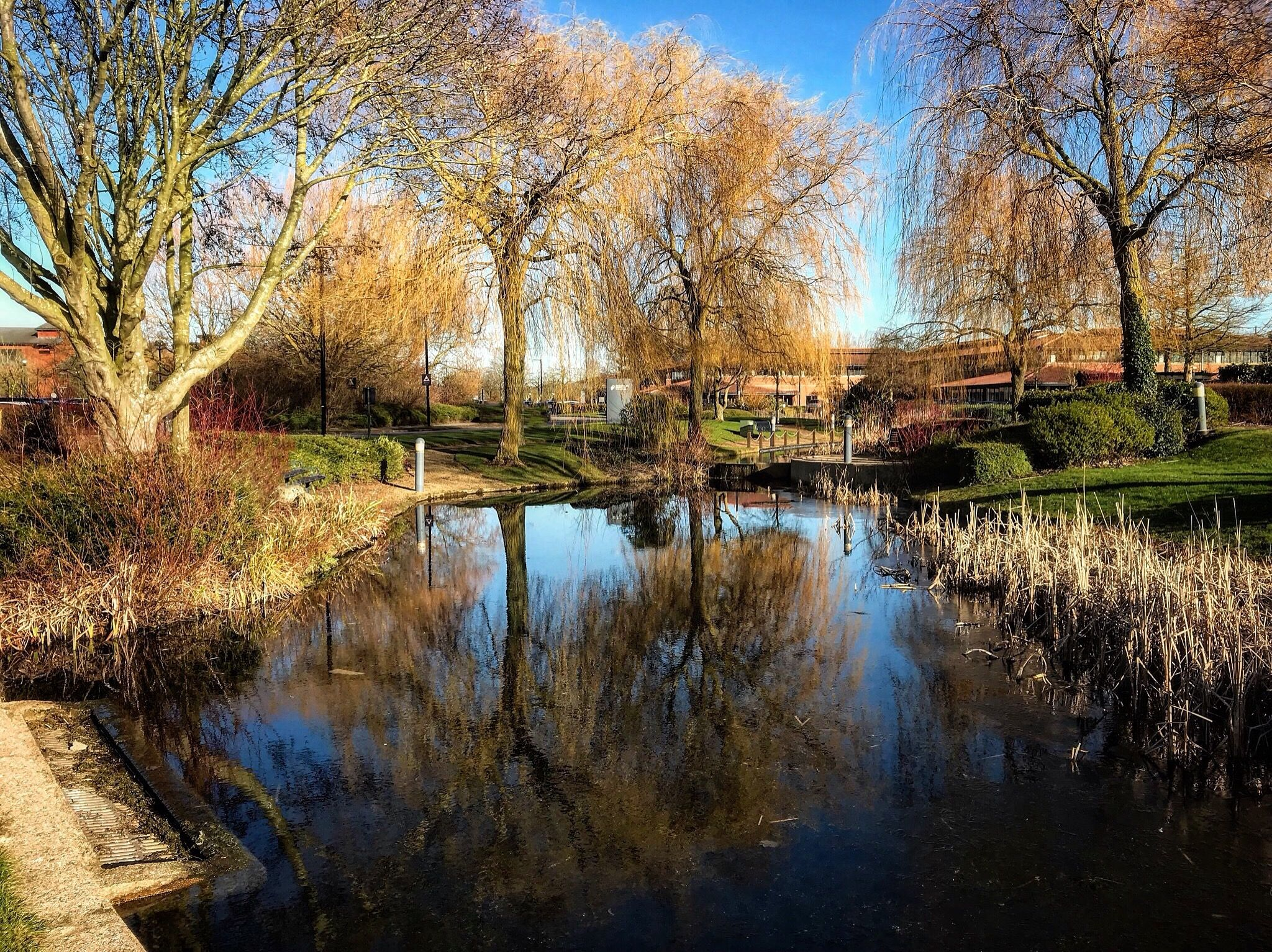 Caldecotte lake reflections