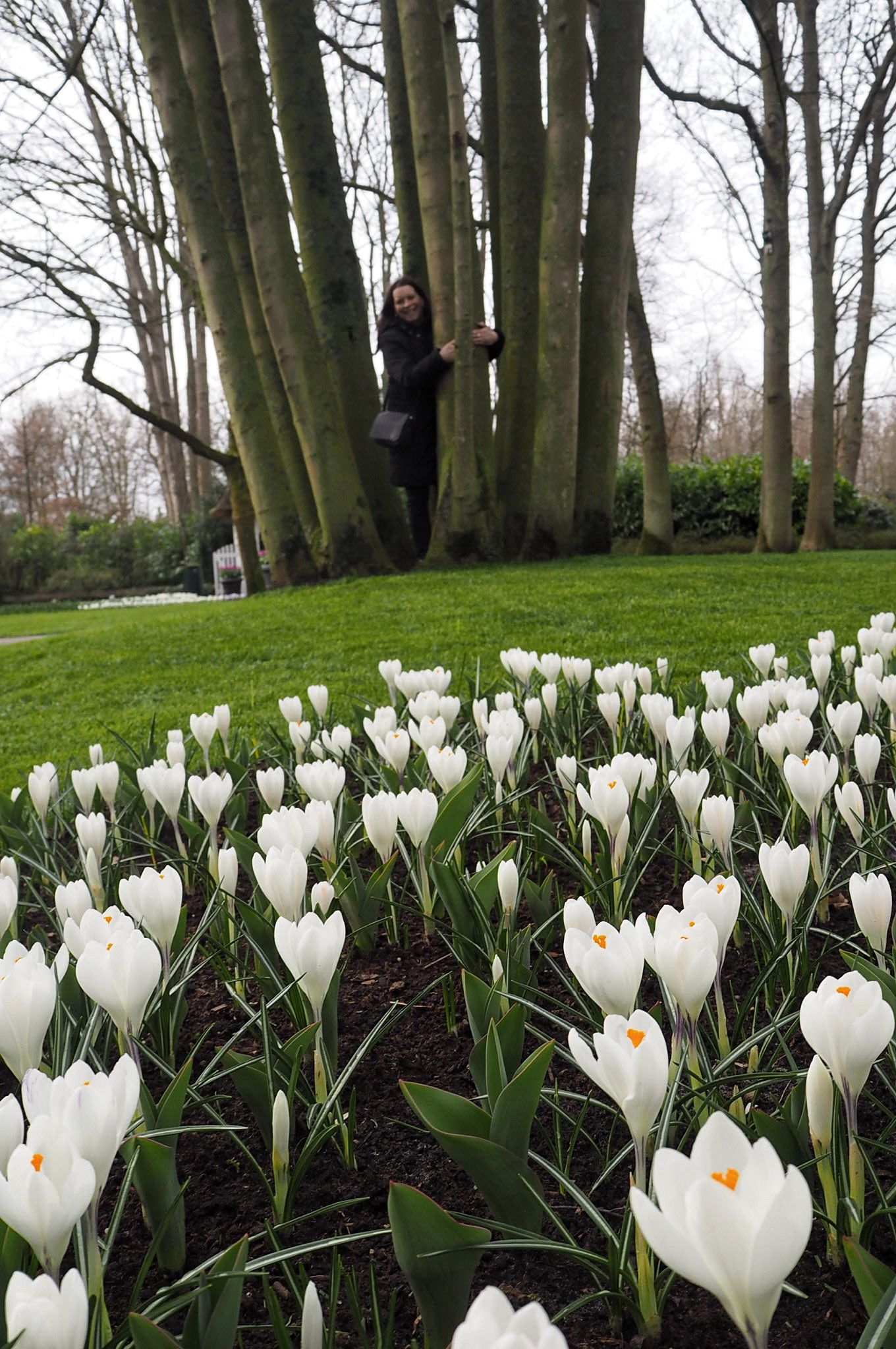 At one with nature at Keukenhof Tulip Gardens