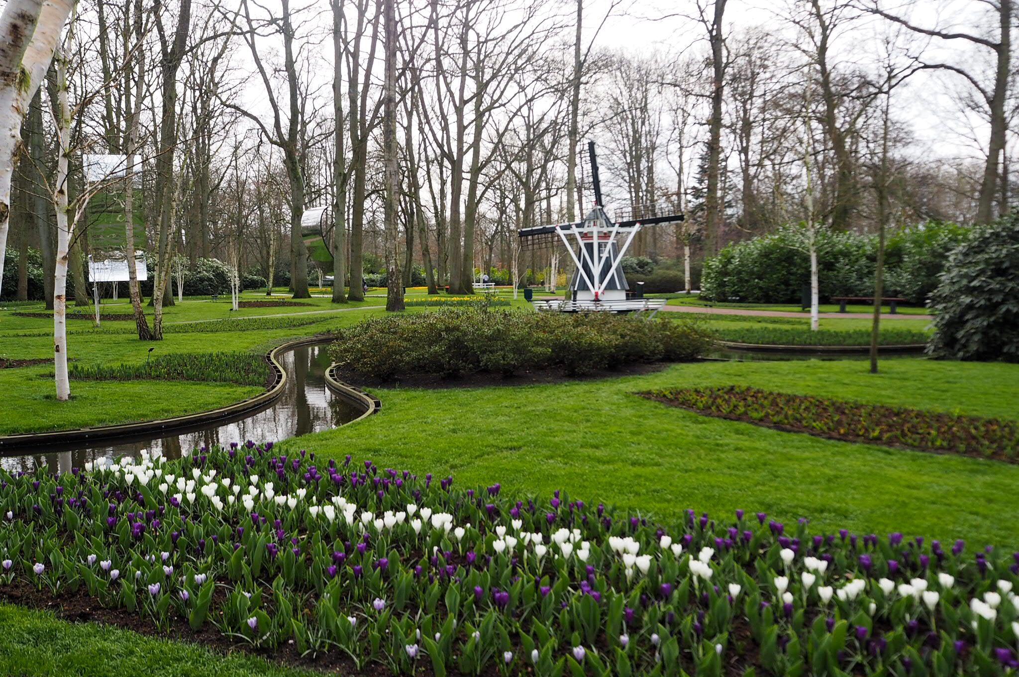 Garden views over Keukenhof Tulip Gardens