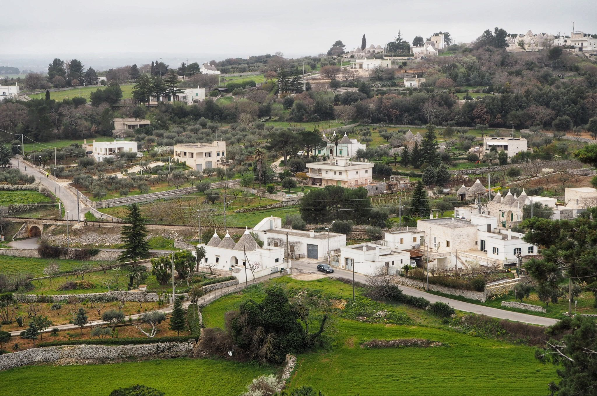 Hillside views of Locorotondo