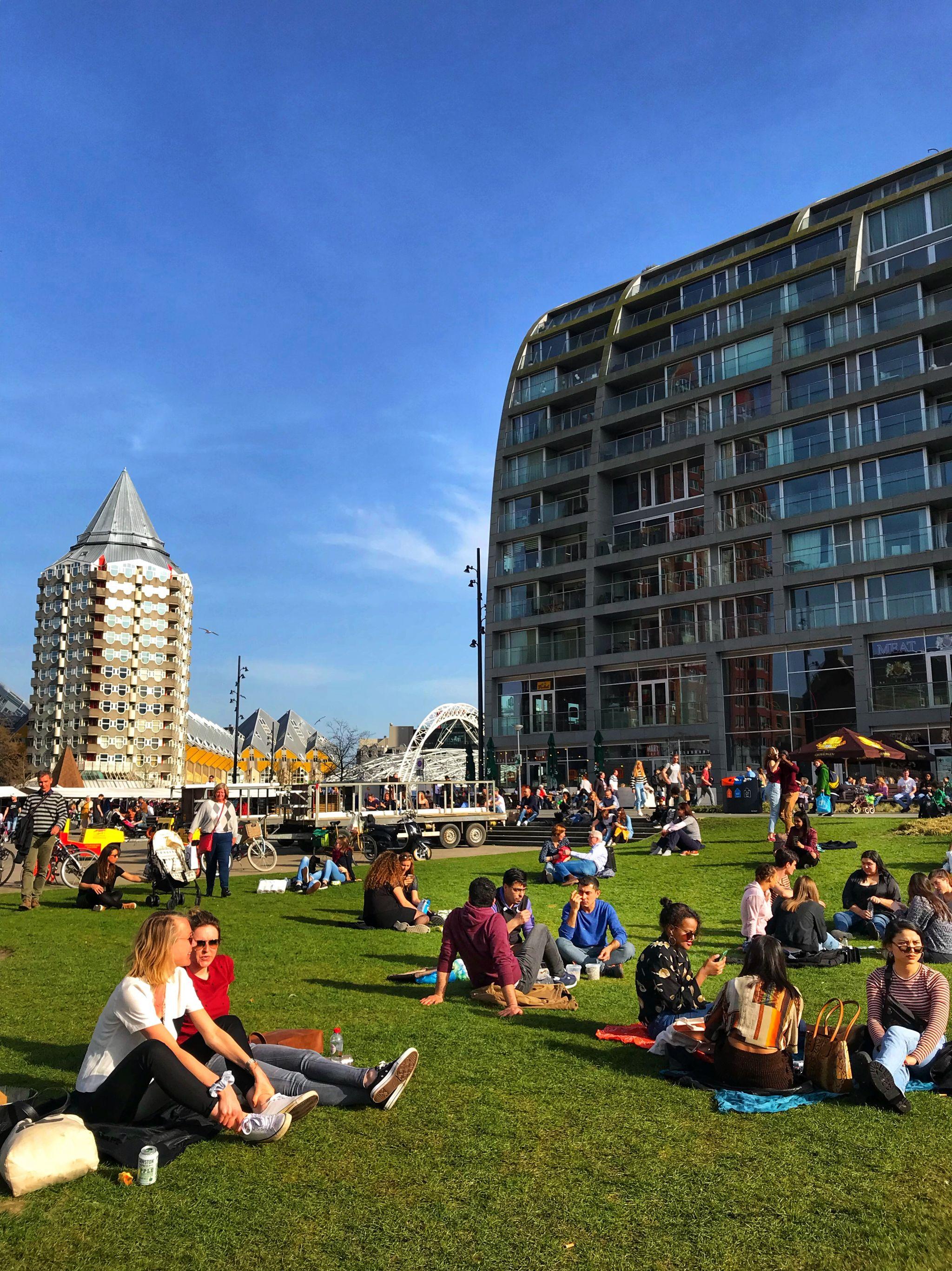 Al fresco picnics in Rotterdam
