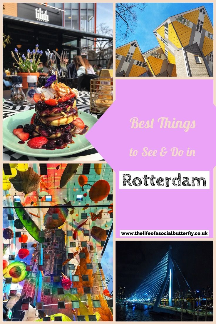 Pinterest Best Things To See & Do in Rotterdam