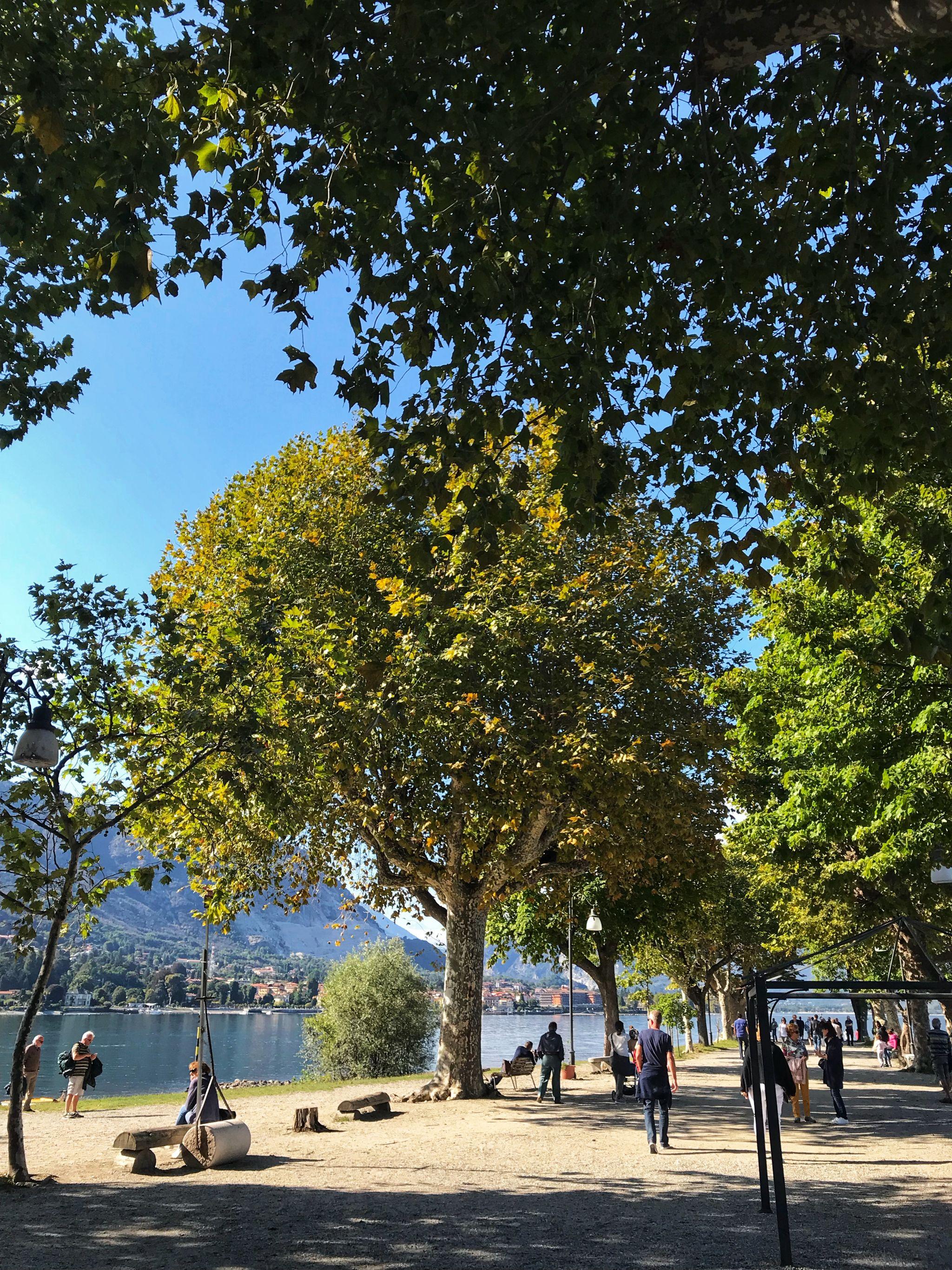 Autumn Colours on Isola Pescatori Lake Maggiore