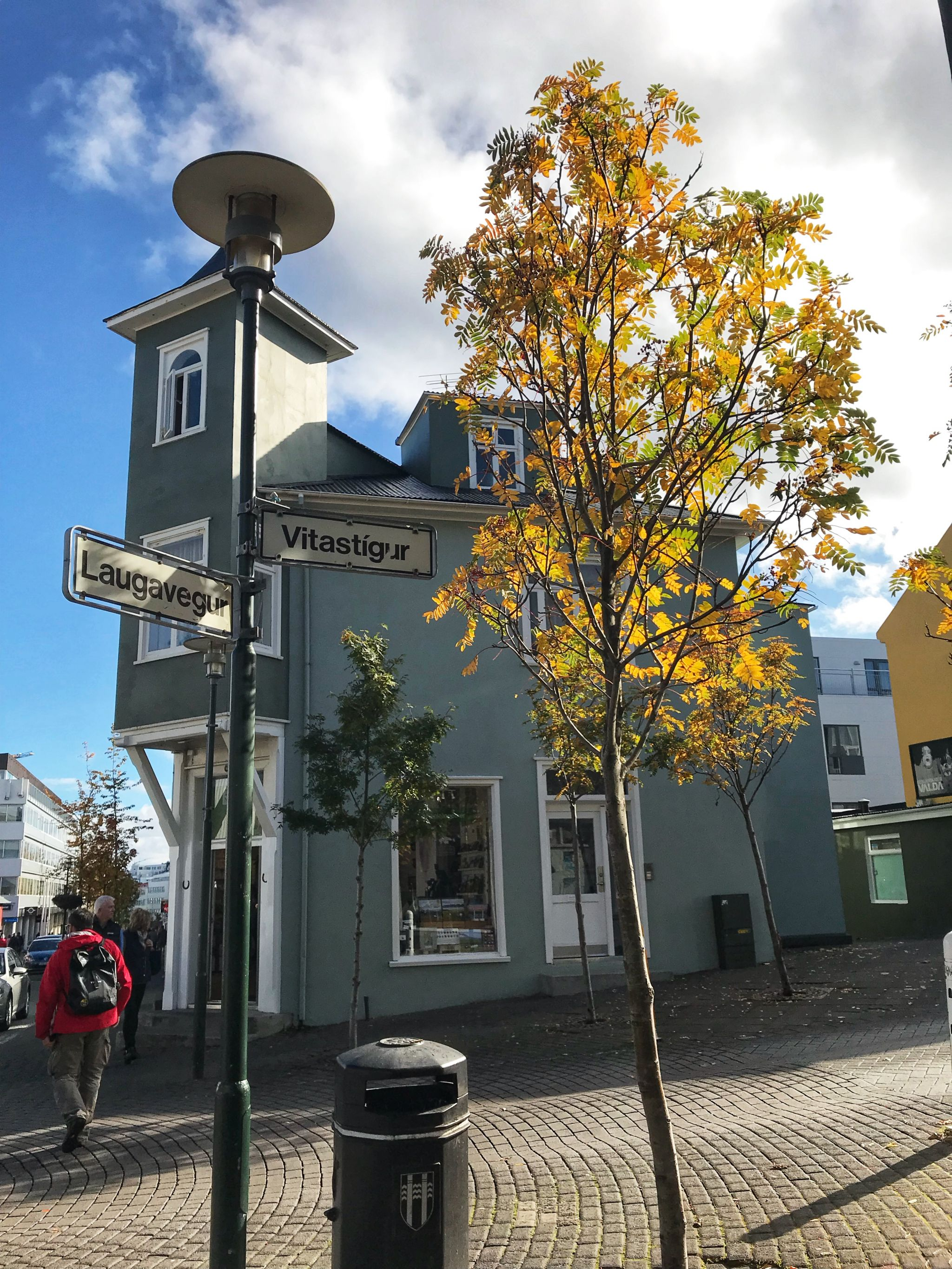 Tree-lined cobbled streets of Reykjavik Iceland