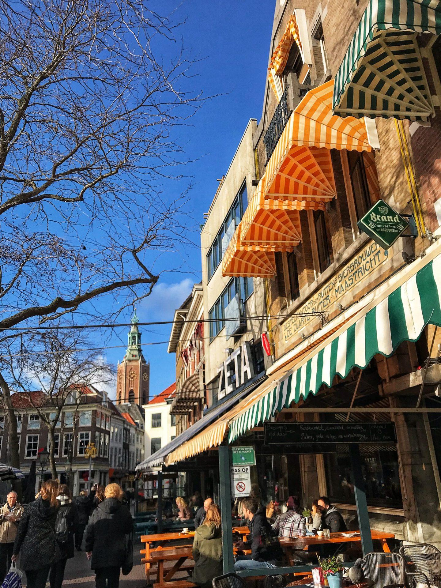 Exploring The Hague Holland